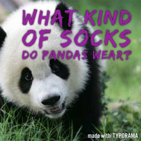 Jackets & Blazers - Because Pandas...